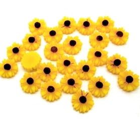 (OR2) Słonecznik 10 szt.