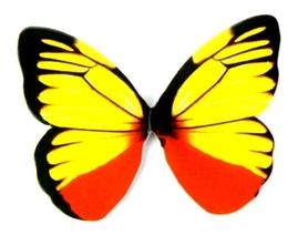 Motyle papierowe 6,5x5cm (wzór 4) - 10 szt.
