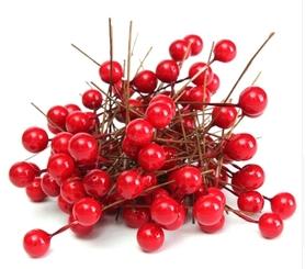 Owoce ostrokrzewu Święta - 10 szt.
