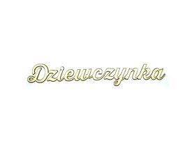 (TEK-ED2) Napis DZIEWCZYNKA - SK242