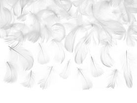 Piórka dekoracyjne, białe, 5-8 cm, 3g (PD1-008)