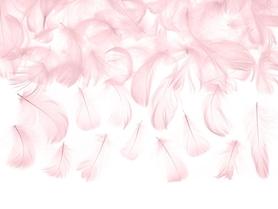 Piórka dekoracyjne, j.różowe, 5-8 cm, 3g (PD1-081J