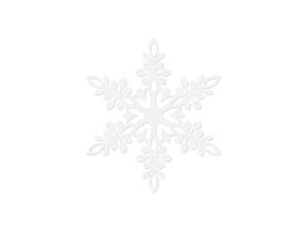 (ZSS2-9) Śnieżynka 9 cm - 10 sztuk