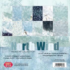 CPS-NW30 Zestaw papierów 30x30cm - North Wind