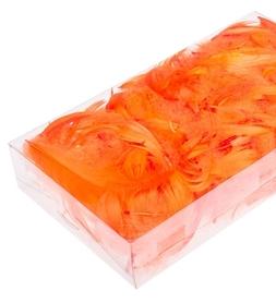 Piórka w pudełku - Pomarańcz (ok. 300szt)