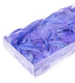 Piórka w pudełku - Wrzos (ok. 300szt)