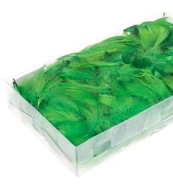 Piórka w pudełku - Zielone (ok. 300szt)