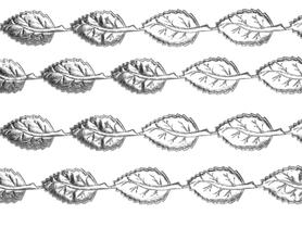 Wstążka Liście srebrne 2x4cm - 1m