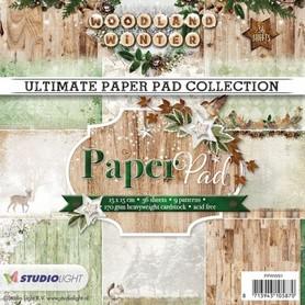Zestaw papierów Studio Light Woodland winter 15x15